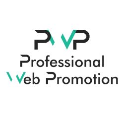 Professional Web Promotion Logo